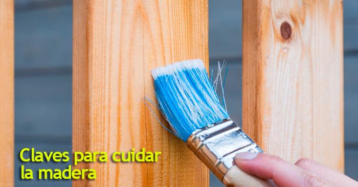 Claves y consejos para cuidar la madera